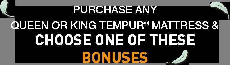 choose one of these bonus