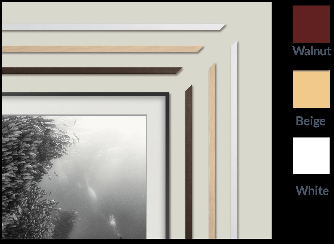 [Frame options]